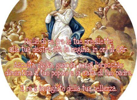 Assunzione di Maria Santissima, regina del Cielo e della terra